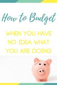 budget beginner